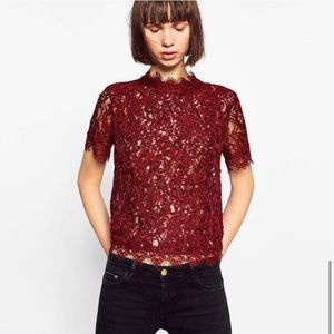 Zara Red Embroidered Lace Scallop Hem Crop Top S M